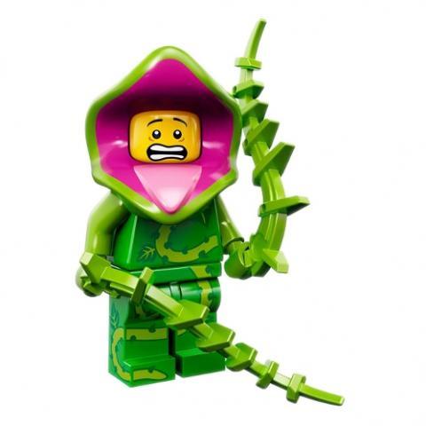 Série 14 - Plant Guy